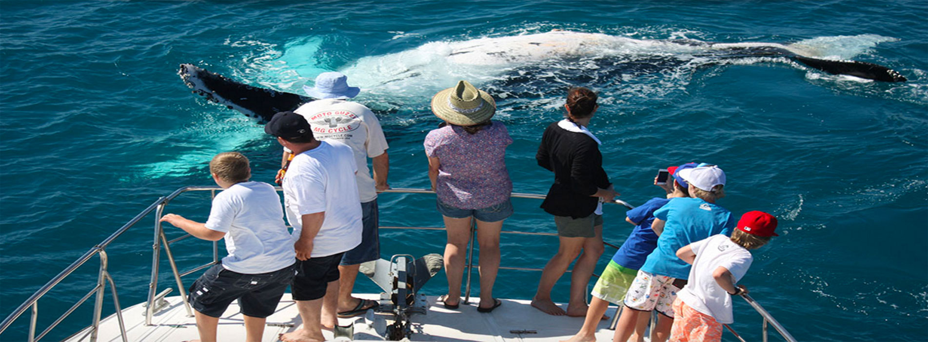 WHALE WATCHING BOAT TOURS passengers West Australia
