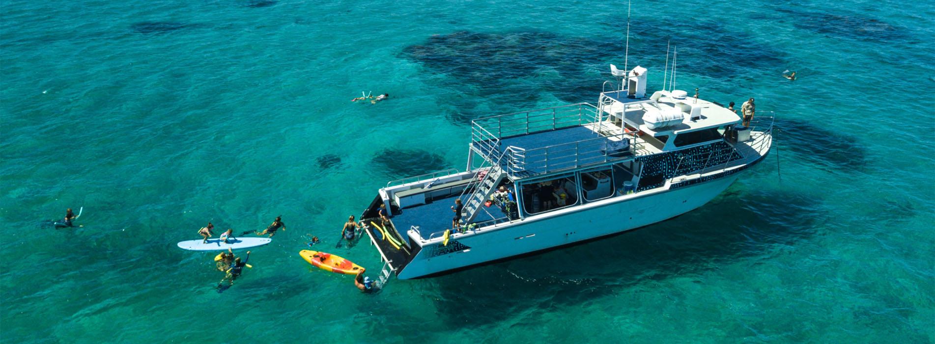 INVESTIGATOR Exmouth Ningaloo Reef Whale swim aerial photo