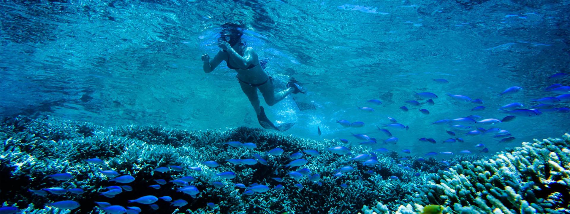 Karma IV Rowley Shoals woman snorkel