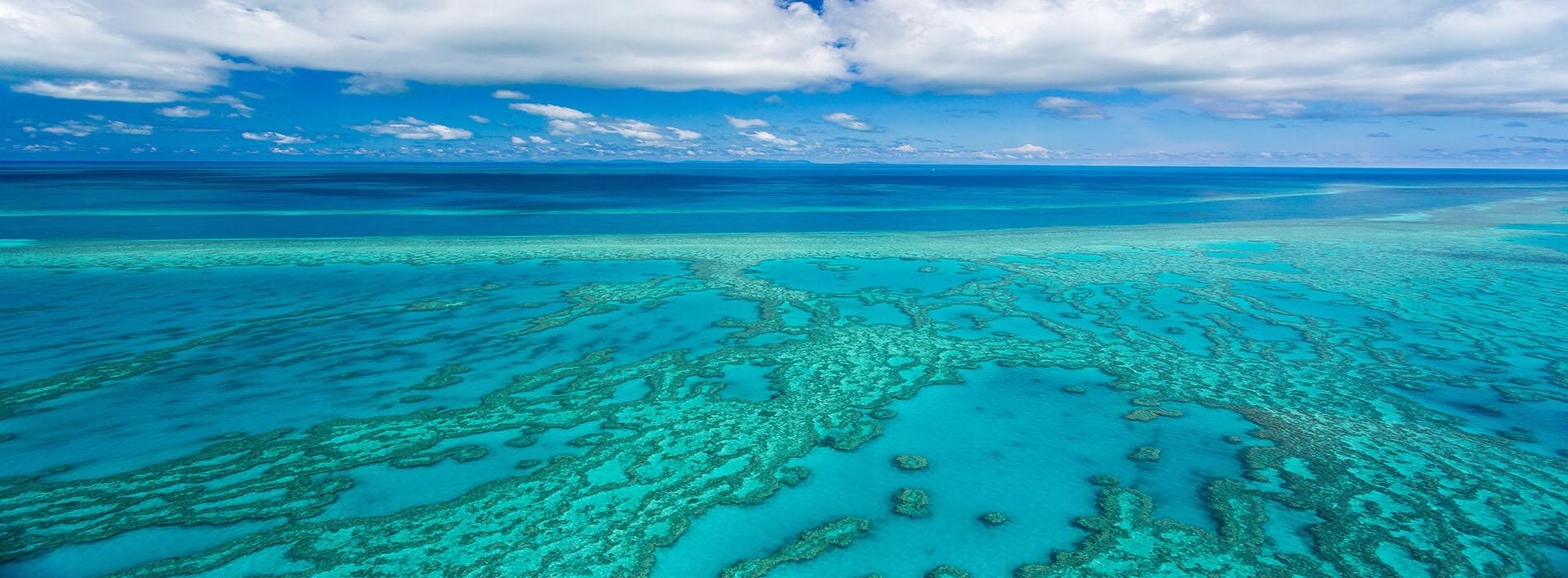 ROWLEY SHOALS fishing blue reefs