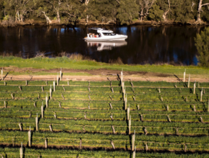 NAIAD BOAT CHARTER PERTH WINERY TOURS