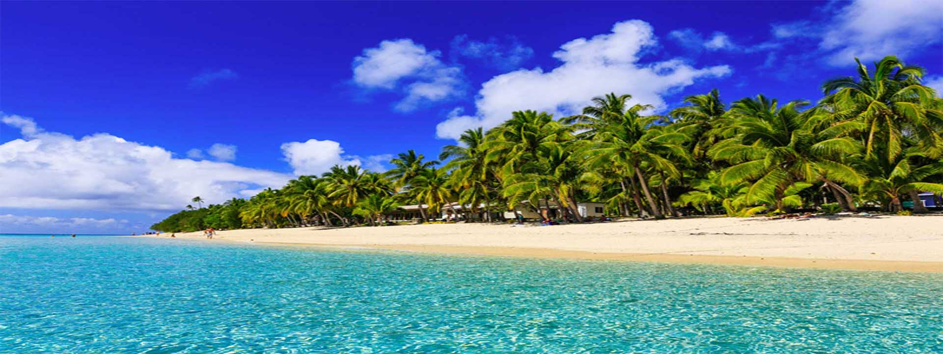 FIJI-HOLIDAY-DEALS-beach-palm-trees