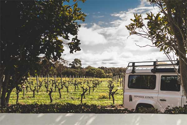 VOYAGER ESTATE winery tours Land Rover & vines