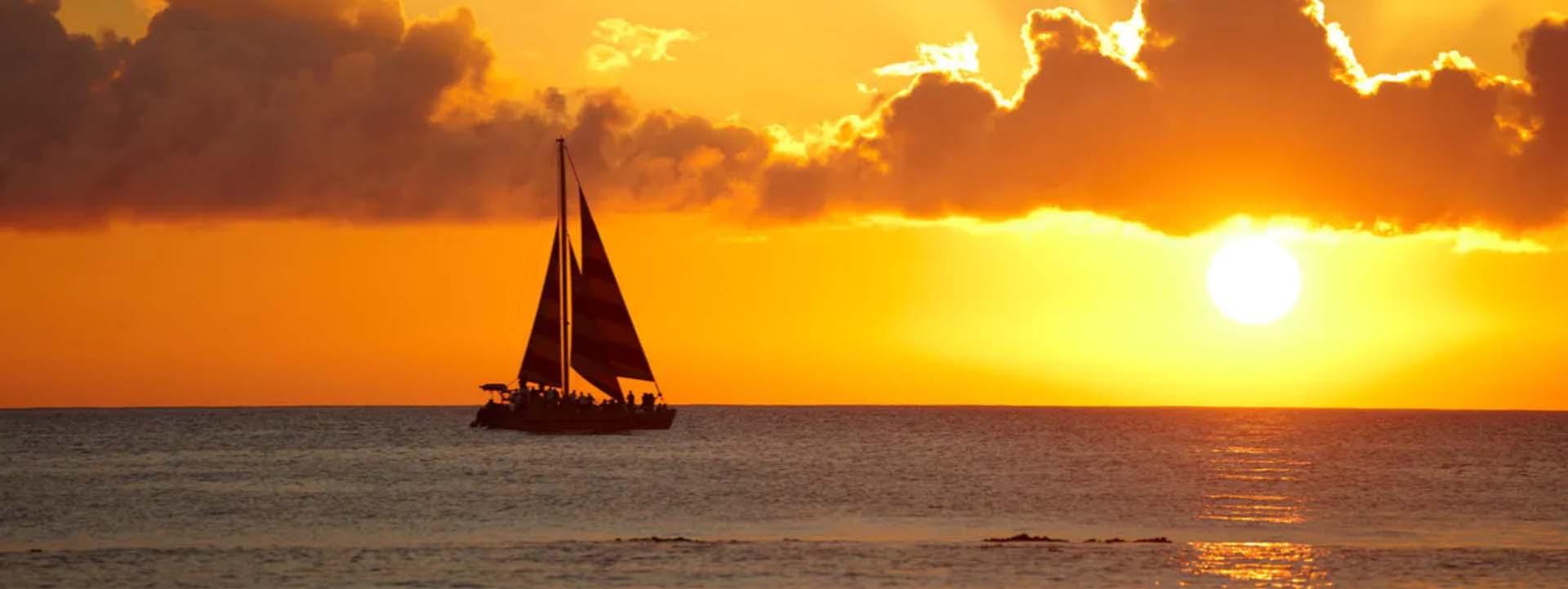 ORCAELLA Whale Watching Sunset Boat Tours