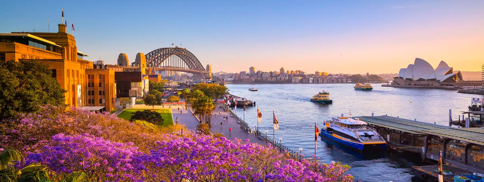 SYDNEY HARBOUR AFTERNOON DISCOVERY tours and cruises
